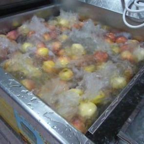 亿水牌水果清洗机