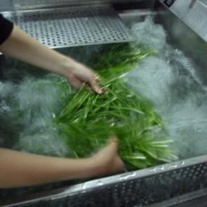 韭菜清洗机