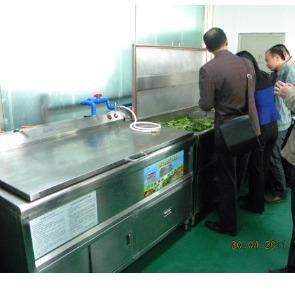 食品厂加工洗菜机