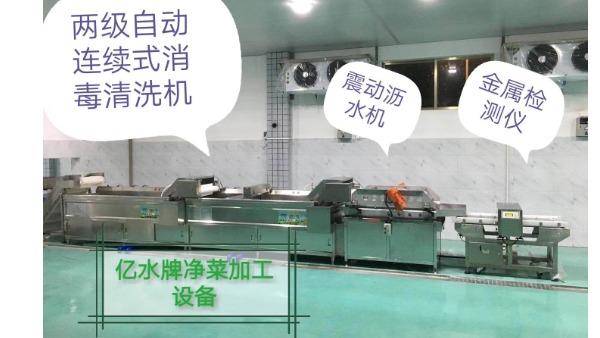 制衣厂食堂用洗菜机