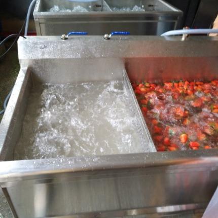 洗草莓,亿水牌洗菜机