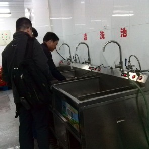 食堂洗菜机