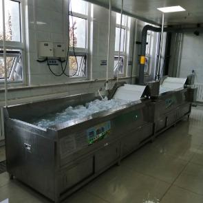 两级连续式洗菜机