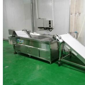 单级连续式洗菜机