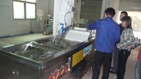 广州洗菜机,自动连续式洗菜机