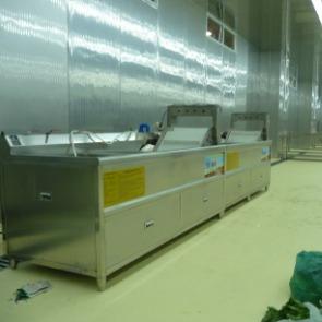 净菜配送中心洗菜机