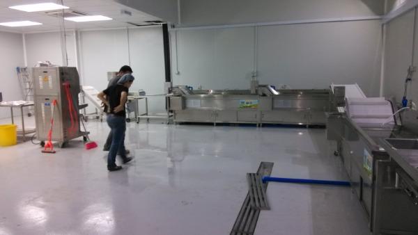 净菜加工中心洗菜机