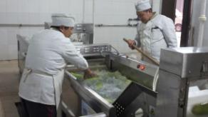 山东大学用洗菜机