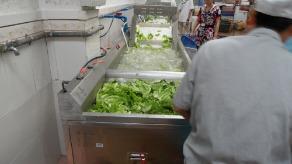 广亚铝业饭堂洗菜机,连续式洗菜机
