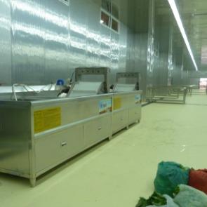 净菜配送中心,洗菜机能洗哪些菜呢?