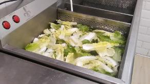洗菜机可以洗干净吗?