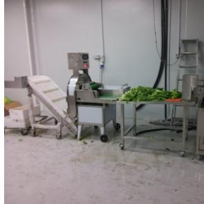 食品厂生产流水线