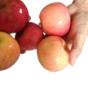 水果净化机