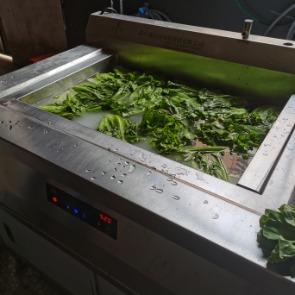 酒楼洗菜机,食品净化机,生菜清洗机