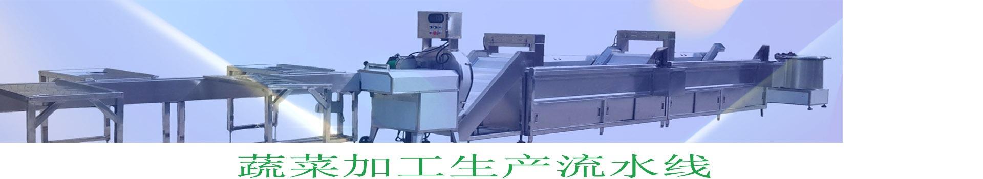 食堂自动洗菜机,连续式洗菜机