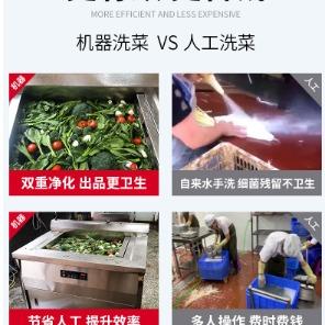 蔬菜净化中